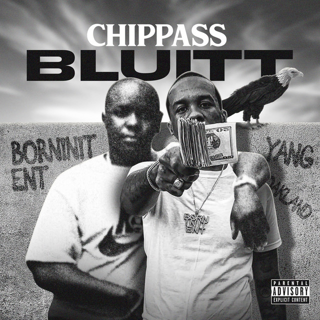 Chippass – BLUITT