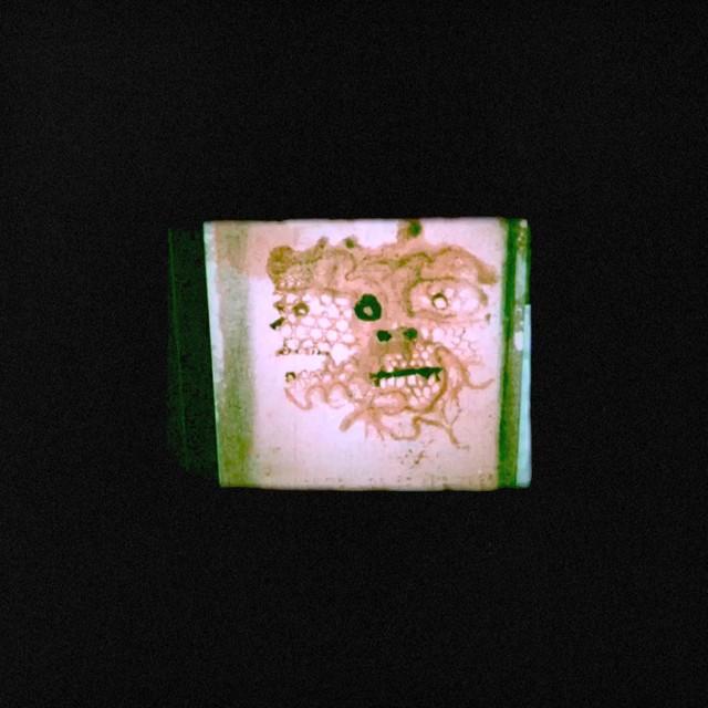 Chris Orrick & The Lasso – I Read That I Was Dead