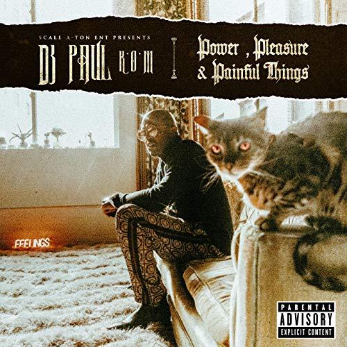 DJ Paul – Power, Pleasure & Painful Things