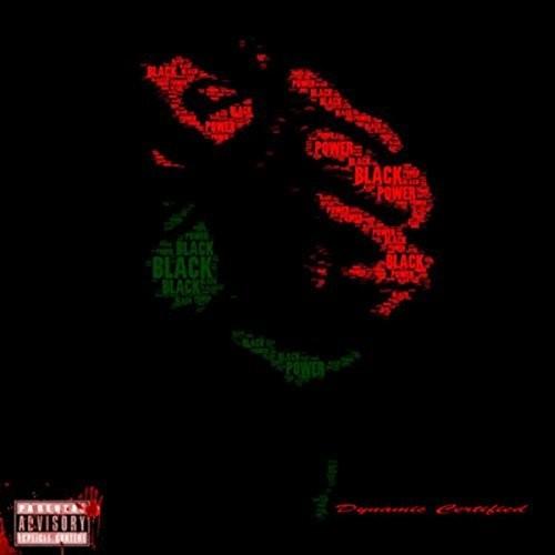 Dynamic Certified – Black Power