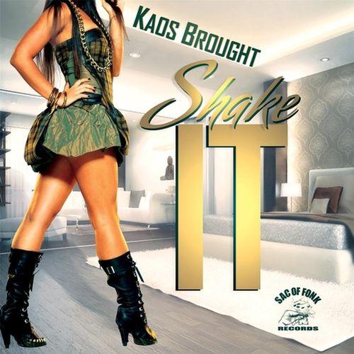 Kaos Brought – Shake It