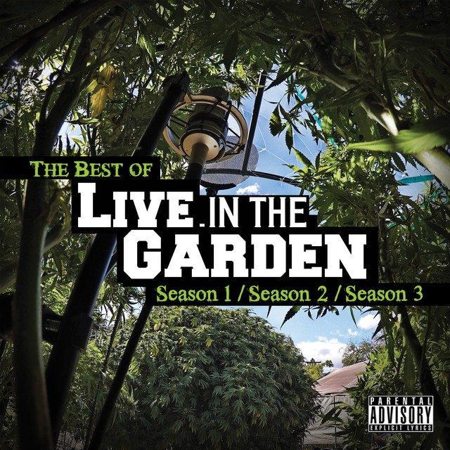 Mendo Dope – The Best Of Live In The Garden