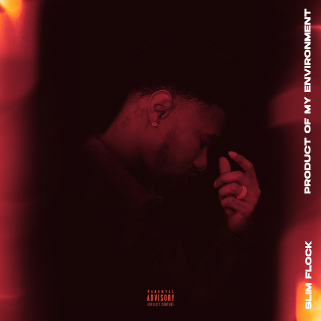 Slim Flock – Product Of My Environment