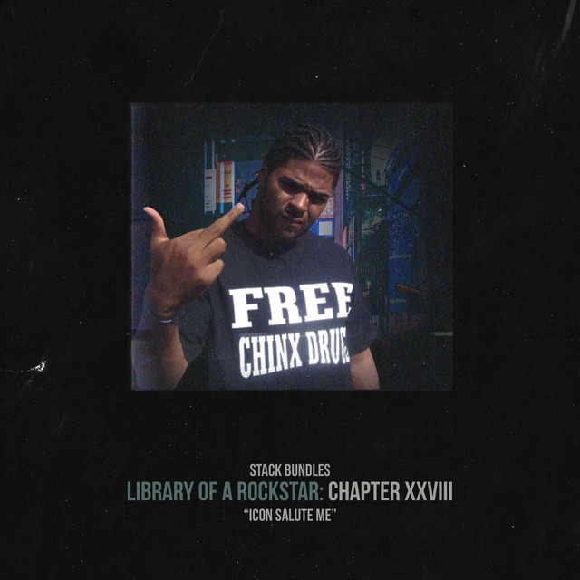 Stack Bundles – Library Of A Rockstar: Chapter 28 – Icon Salute Me