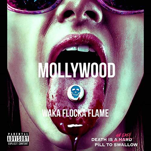 Waka Flocka Flame – Mollywood